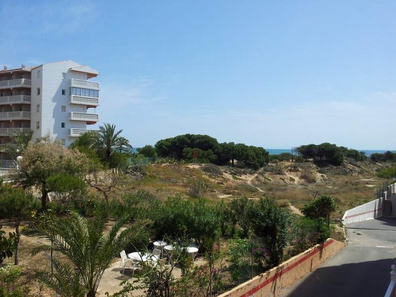 Apartment for rent - La Mata - Costa Blanca in Nexus Grupo