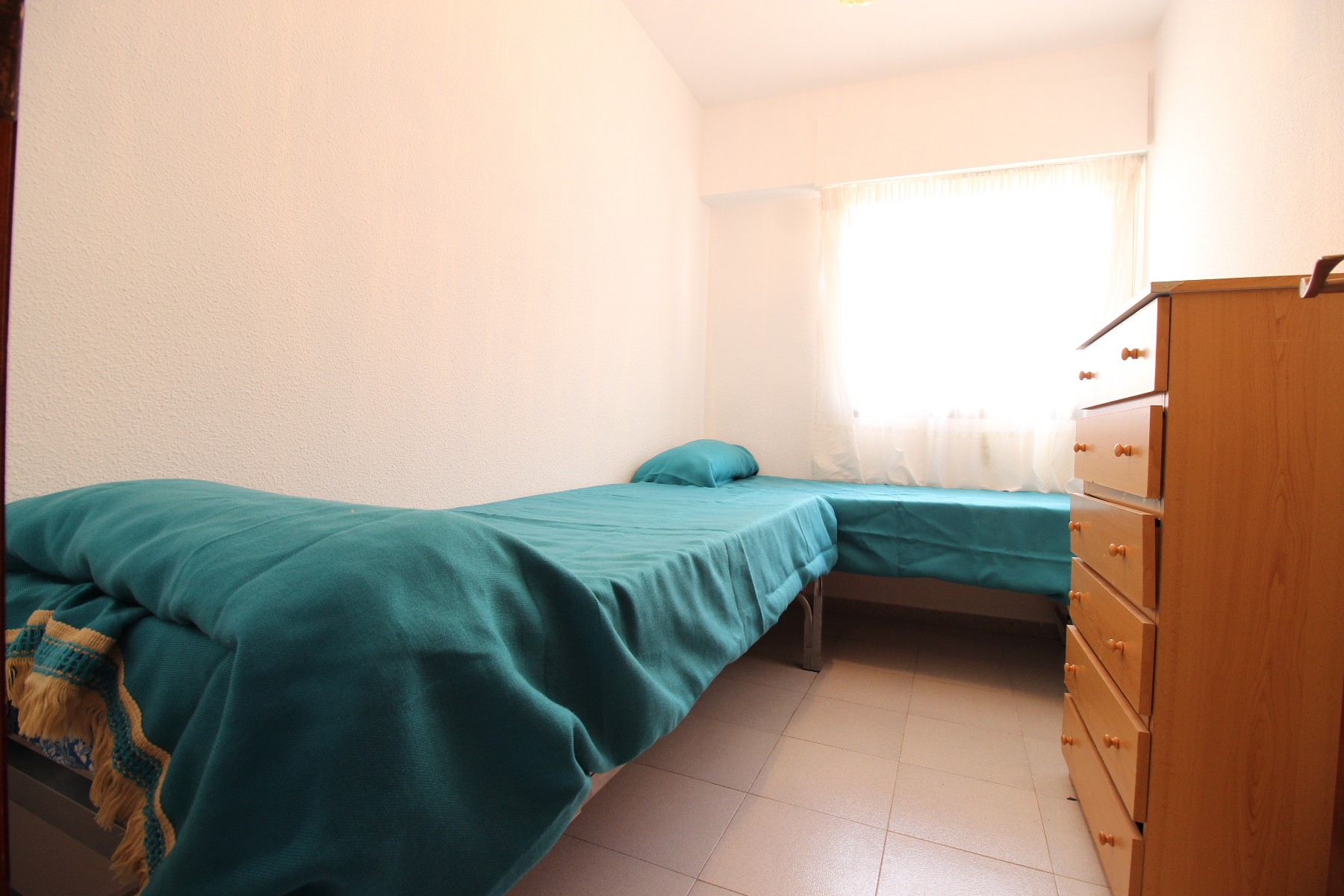 2 bedroom Apartment in Guardamar del Segura - Rentals in Nexus Grupo