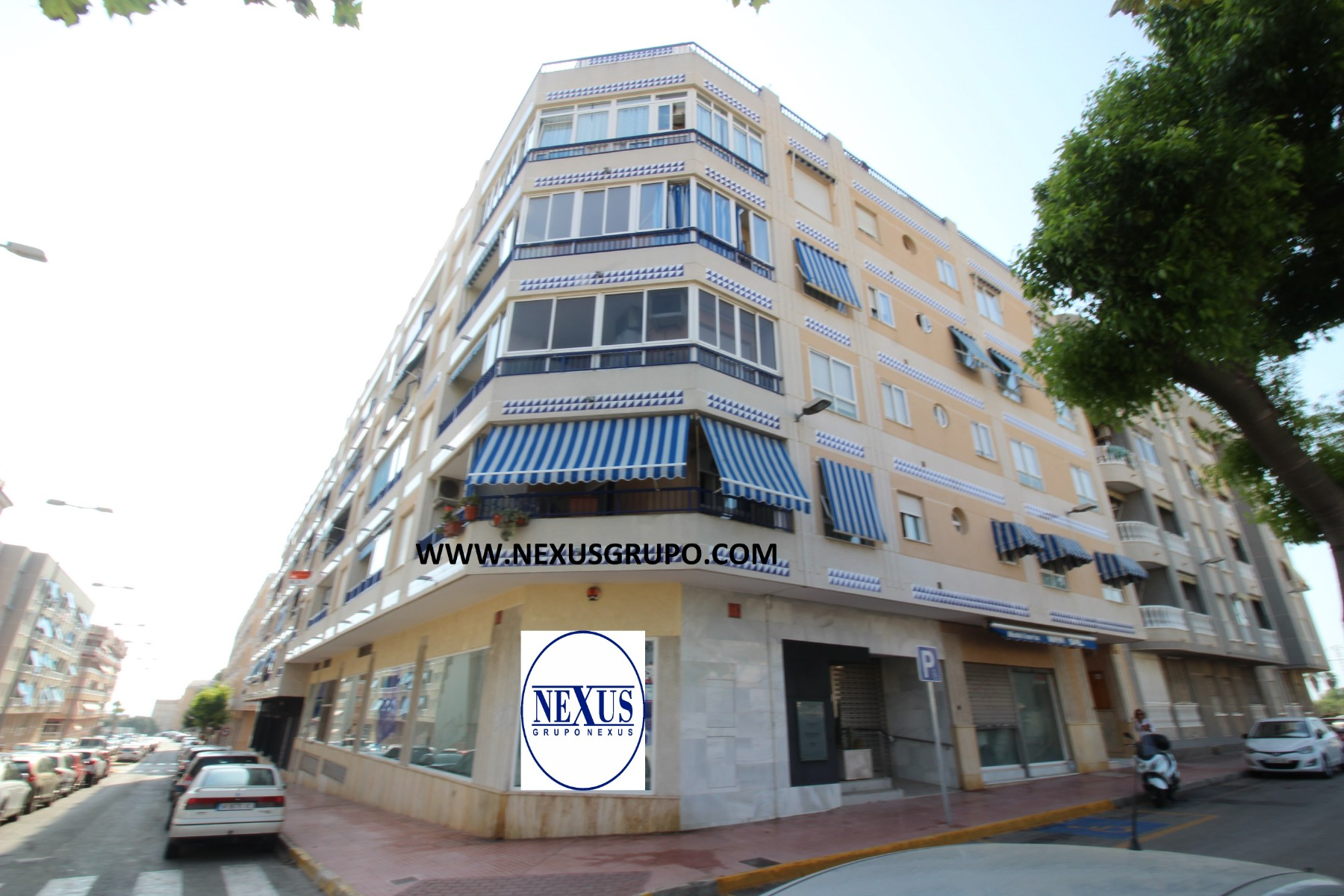 Real Estate Group Nexus, Sells excellent and very spacious apartment in Nexus Grupo