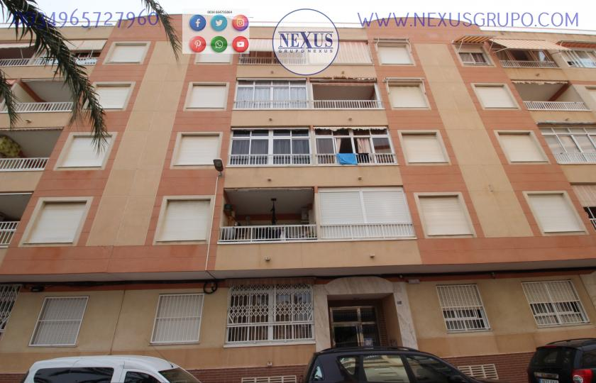 INMOBILIARIA GRUPO NEXUS RENT APARTMENT FOR THE WHOLE YEAR in Nexus Grupo