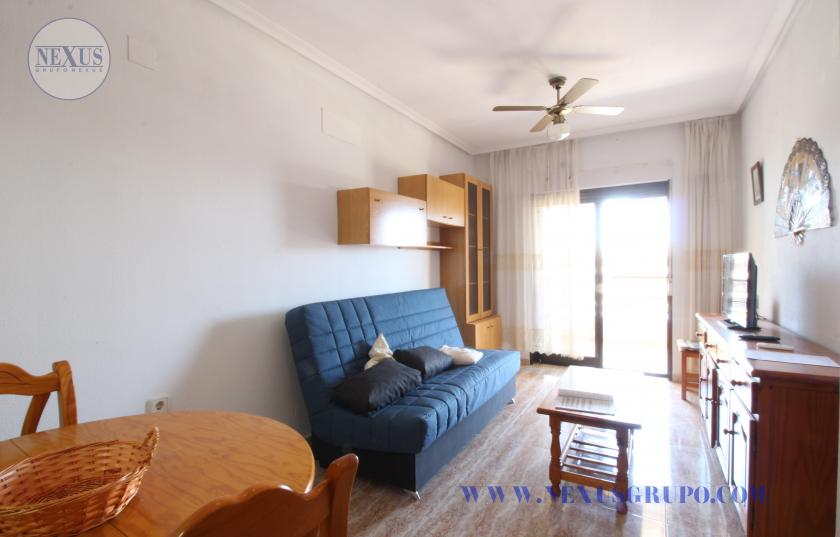 REAL ESTATE GROUP NEXUS RENTAL APARTMENT FOR ALL THE YEAR in Nexus Grupo