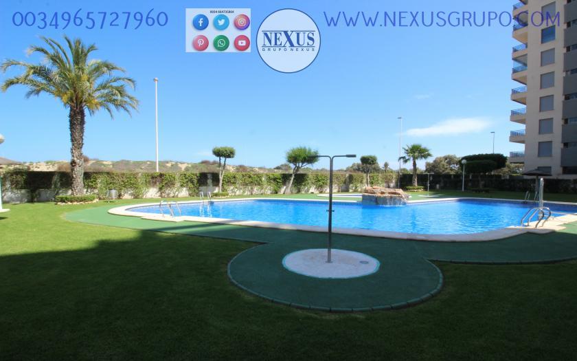 INMOBILIARIA, NEXUS GROUP RENT APARTMENT FOR THE WHOLE YEAR PUERTO MARINO in Nexus Grupo