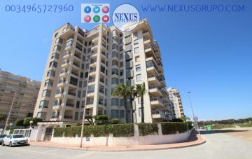 INMOBILIARIA, NEXUS GROUP RENT APARTMENT FOR THE WHOLE YEAR PUERTO MARINO in Nexus Grupo