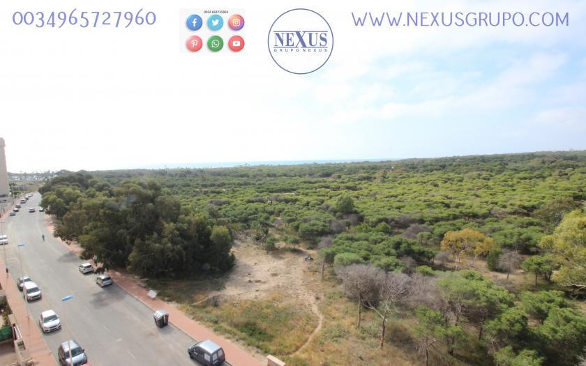 INMOBILIARIA GRUPO NEXUS SELLS APARTMENT IN MÉDICO BASILIO PAREDES in Nexus Grupo
